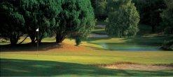 golf-main-banner